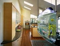 чистка аквариумов на дому