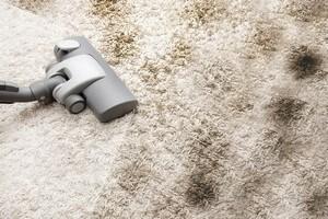 чистка ковров Кедровый